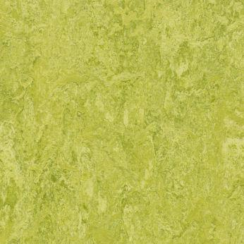 Forbo Marmoleum Real 3224 Chartreuse