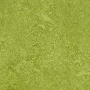 Forbo Marmoleum Real 3247 Green