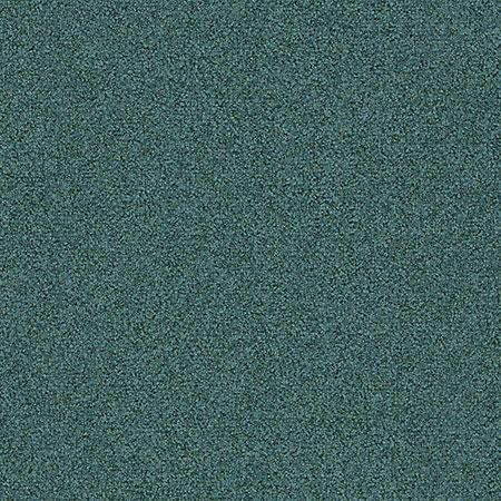 chameleon 338422