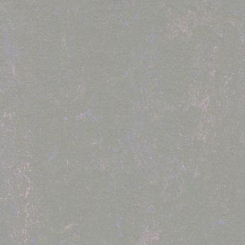 3713 Purple haze