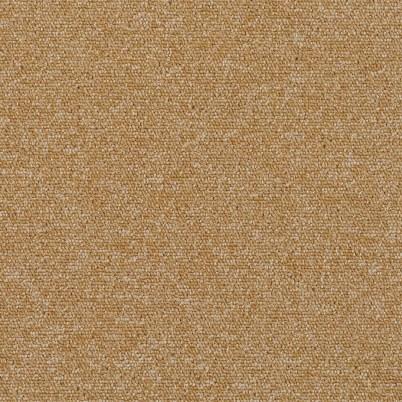 7844 Biscotti