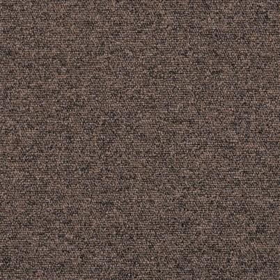 7849 Brown Bear