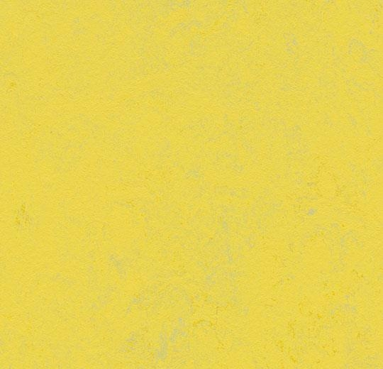 Marmoleum Concrete 3741 Yellow Glow