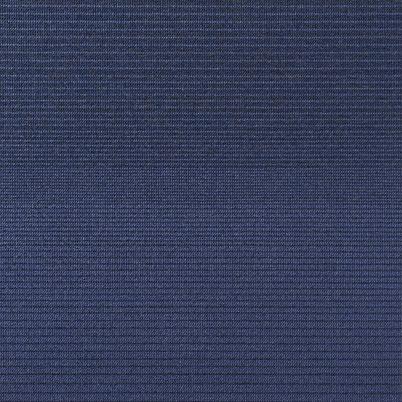 Blue Anemon